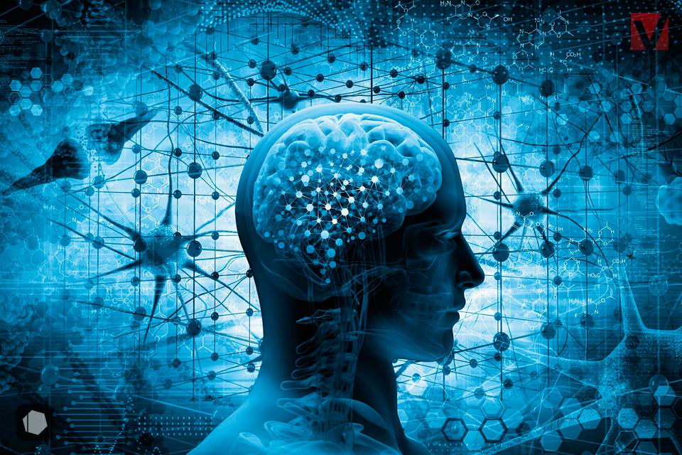 Beneficios de hacer ejercicio para el cerebro.